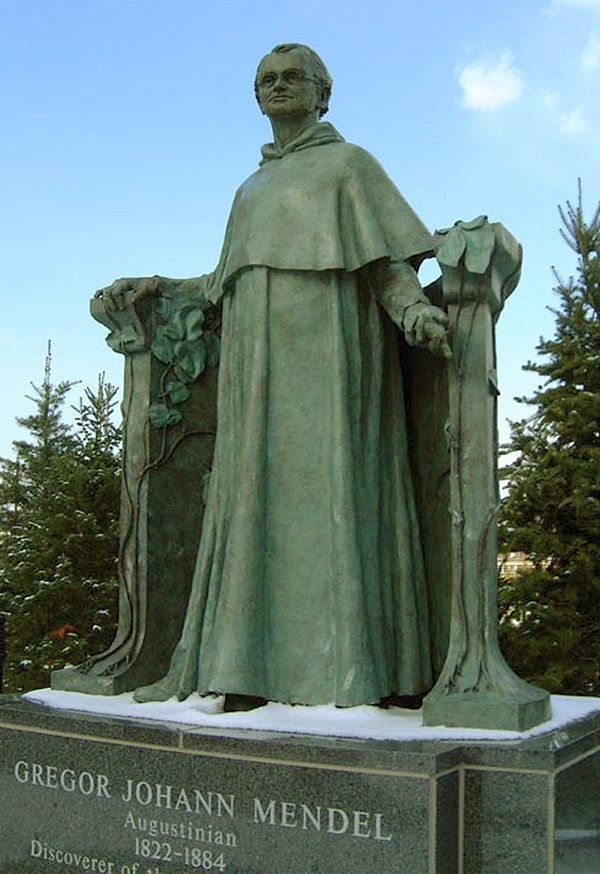 Gregor Mendel, a 1998 bronze sculpture by James Peniston. Villanova University near Philadelphia, Pennsylvania